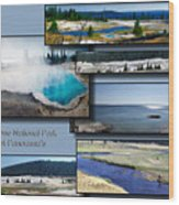 Yellowstone Park August Panoramas Collage Wood Print