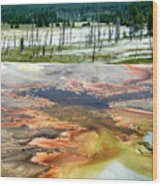 Yellowstone Park Firehole Spring Area Vertical 02 Wood Print