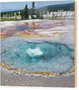Yellowstone Park Firehole Spring In August 02 Wood Print