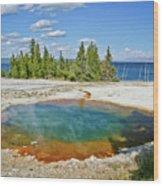 Yellowstone Prismatic Pool Wood Print