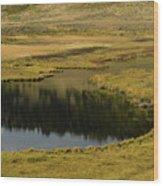 Yellowstone River Pond Wood Print