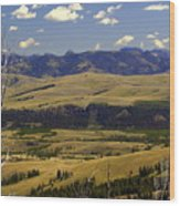 Yellowstone Vista 2 Wood Print