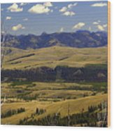 Yellowstone Vista Wood Print