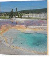 Yellowstone's Firehole Wood Print