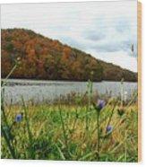 Yellowwood Lake, Southern Indiana Wood Print