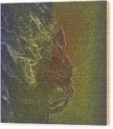Yeti Wood Print