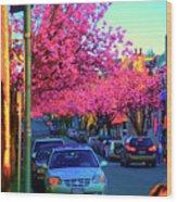 Yew Street Spring Wood Print