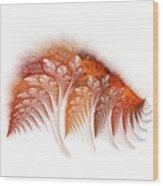 Ygglaand Balsam  Wood Print