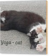 Yoga - Cat Wood Print