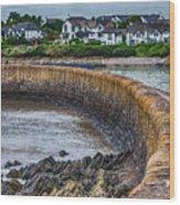 York Breakwater Barry Island Wood Print