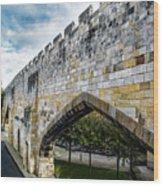 York City Roman Walls Wood Print