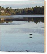 York River, Maine Wood Print