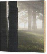 York River State Park Rd Foggy Woods Ll Wood Print