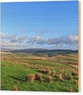 Yorkshire Dales - 28 Wood Print