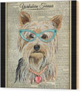 Yorkshire Terrier-jp3856 Wood Print