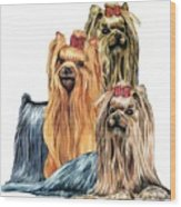 Yorkshire Terriers Wood Print