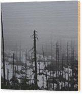 Yosemite 11 Wood Print