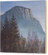 Yosemite Dawn Detail Wood Print