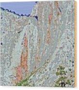Yosemite Falls Drought Wood Print