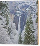 Yosemite Falls In The Snow Wood Print