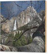 Yosemite Falls Tree Wood Print