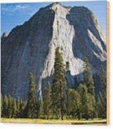 Yosemite Meadow 2 Wood Print