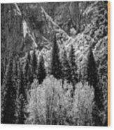 Yosemite Meadow In Black And White Wood Print