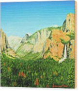 Yosemite National Park Wood Print by Jerome Stumphauzer
