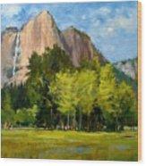 Yosemite - Ribbon Falls Wood Print