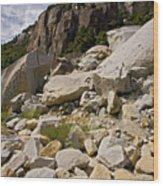 Yosemite Rockslide Wood Print