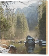 Yosemite Spring Wood Print