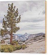Yosemite Tree Wood Print
