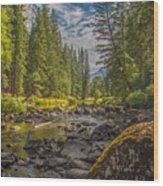 Yosemites N Park Wood Print
