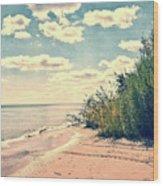 You Walked Away - Wisconsin Wood Print