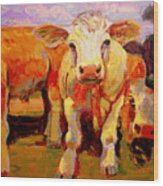 Young Cow Wood Print