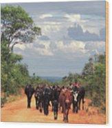 Young Herders, Zambia Wood Print