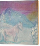 Young Horse On Snowy Mountain Wood Print