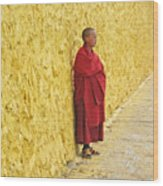 Young Monk Against Yellow Wall Wood Print