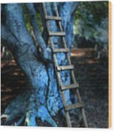 Young Woman Climbing A Tree Wood Print