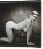 Young Woman Nude 1729.568 Wood Print