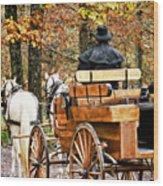 Your Carriage Awaits Wood Print
