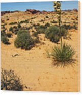 Yucca And Desert Primrose In The Valley Of Fire Wood Print