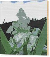 Yucca Blossom Wood Print