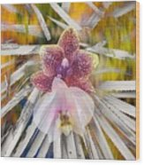 Yucca Dreaming Of Orchids Wood Print