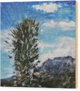Yucca Glow  Wood Print