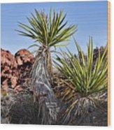 Yucca Pair Wood Print