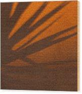Yucca Shadow Wood Print