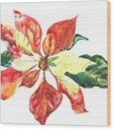 Yupo Poinsettia Wood Print