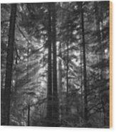 z Wood Print