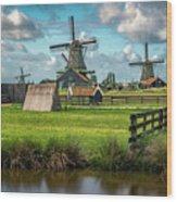 Zaanse Schans And Farm Wood Print